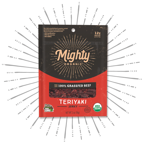 Mighty Jerky Teriyaki